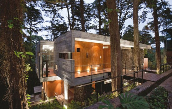 Houses With Superb Architecture Built In Nature