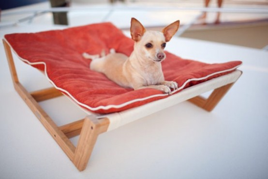 Have a spoilt pets? Here is Deluxe, Effective and Comfortable Furniture For Them