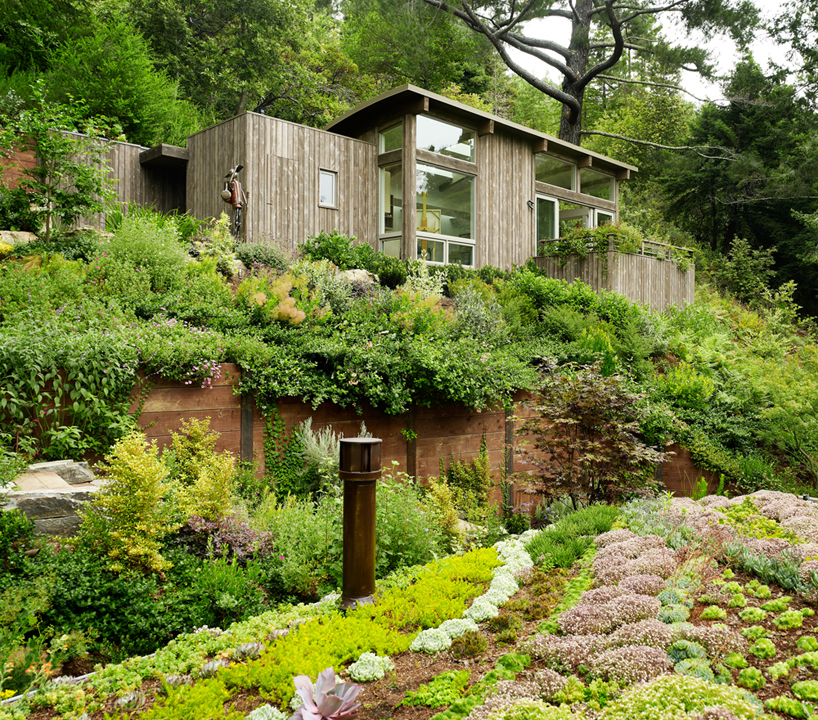 Feldman Architecture, Mill Valley Cabins in San Francisco