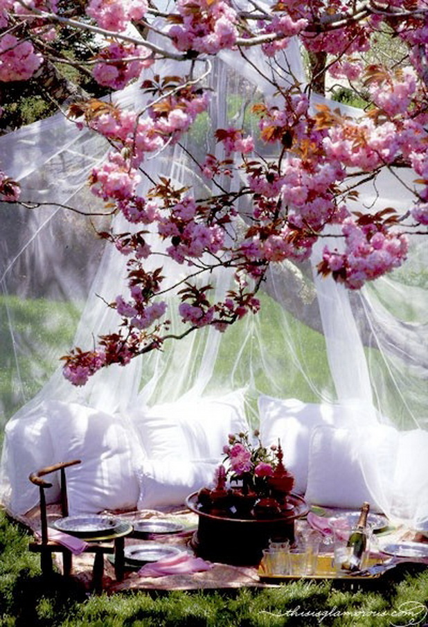 Garden Canopy Design
