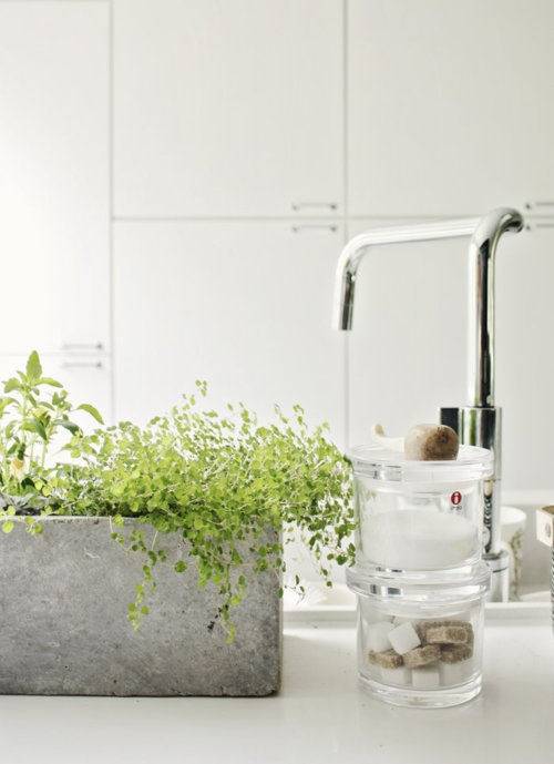 48 bathroom interior ideas with flowers and plants ideal for Interior designs with plants