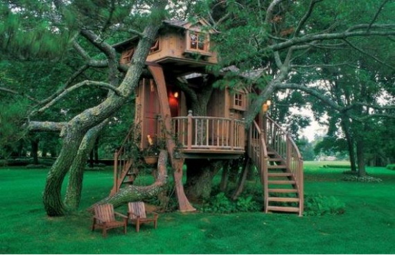 5 Reasons a Tree House is Your Dream House