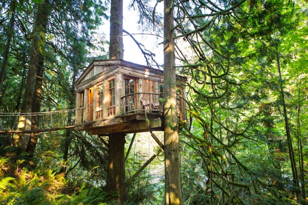 treehouse-point-4