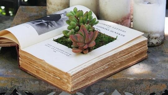 DIY inspiring garden pots-architectureartdesigns.com (5)