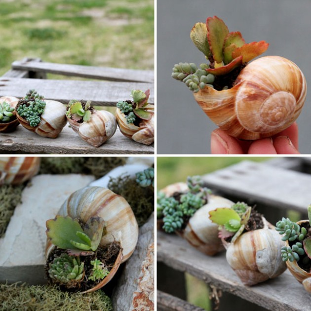 DIY inspiring garden pots-architectureartdesigns.com (9)
