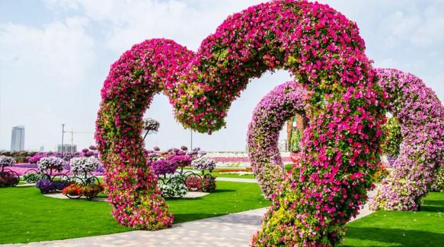 Dubai Miracle Garden-The most Attractive Garden in the World