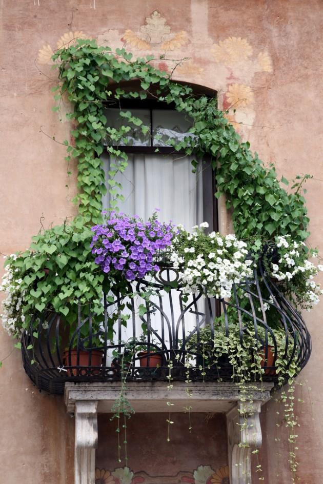 25 charming balcony gardens for Balcony plants