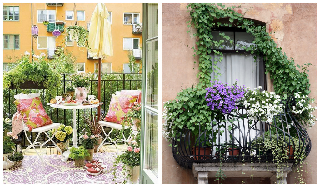 25 charming balcony gardens for Best flowers for apartment balcony