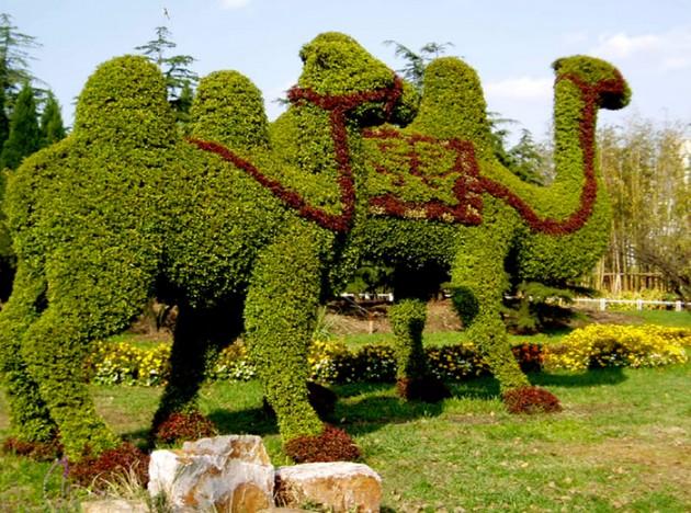 smsread._com_blog_plant-art._html