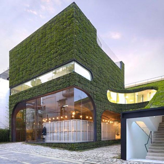 30 Incredible Green Walls