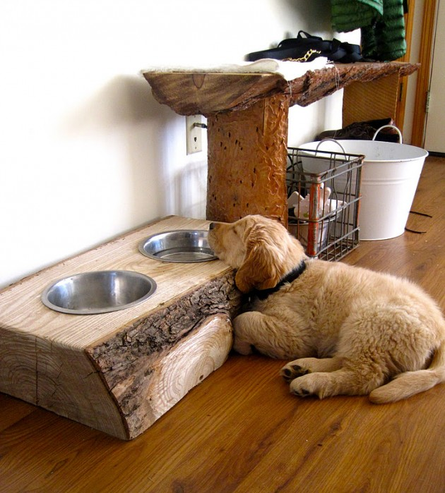 Amazing Interior Design Ideas For Home: 24 Creative DIY Ideas For Pet Beds And Feeders
