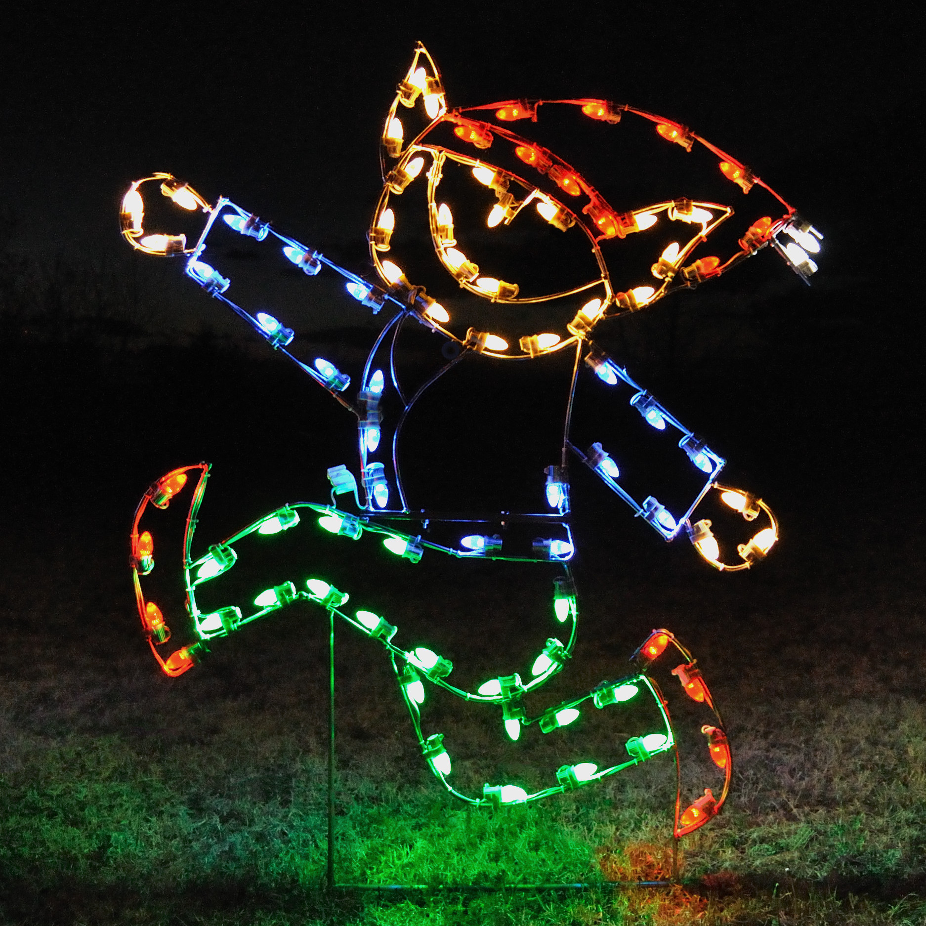 A Collection of Outdoor Christmas Light Displays 10