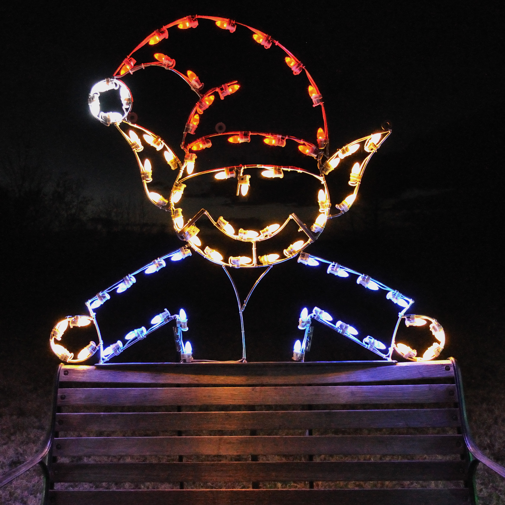 Best 28 large christmas light displays a large for Large outdoor christmas lights