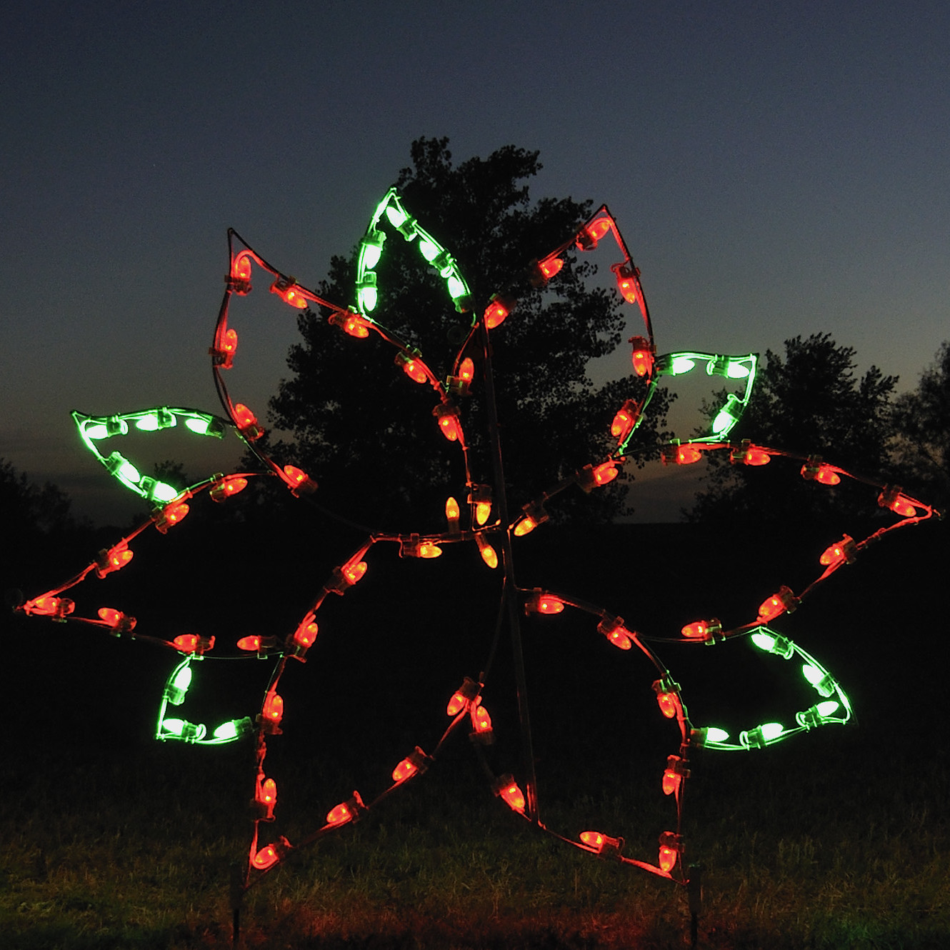 A Collection of Outdoor Christmas Light Displays 7