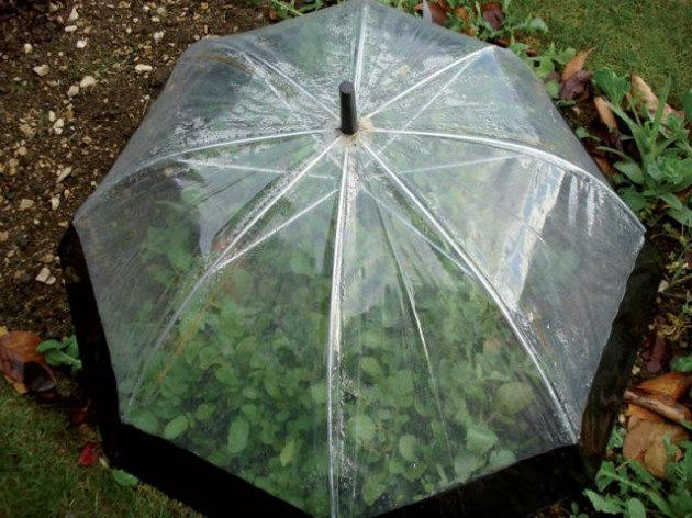 23 Adorable Repurposed Umbrellas
