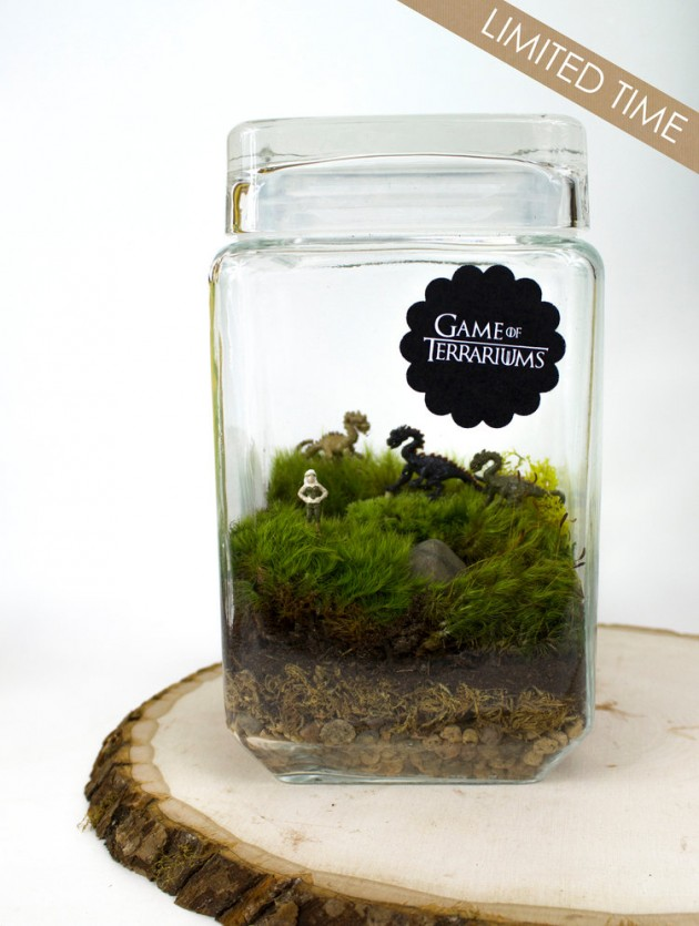 17 whimsical themed terrarium decorations for Game of thrones garden ornaments