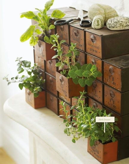 30 amazing diy indoor herbs garden ideas - Indoor Herb Garden Ideas