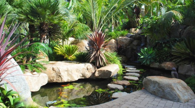 18 Divine Mini Fish Pond Ideas to Break the Monotony in Your Yard