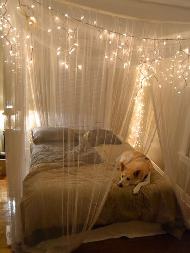 23 Amazing Canopies with String Lights Ideas & Amazing Canopies with String Lights Ideas