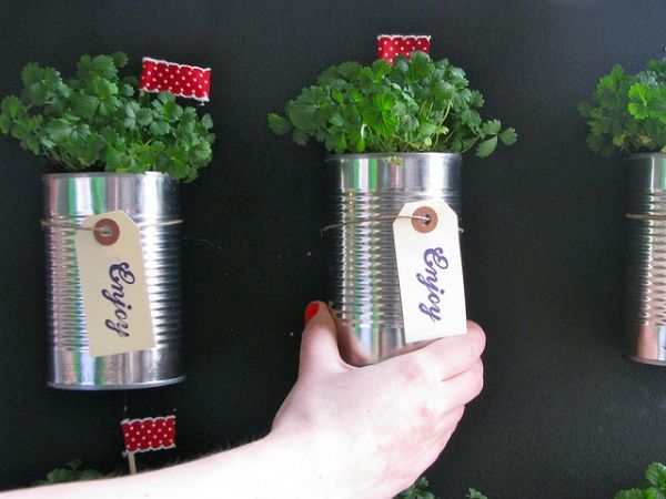 Herb Garden Indoor amazing diy indoor herbs garden ideas