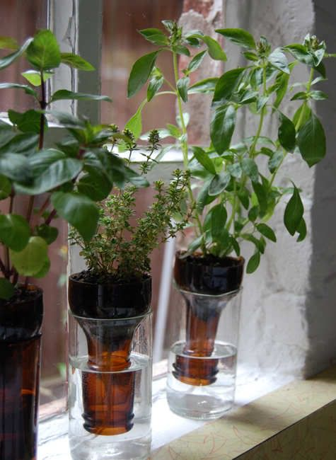 Herb Gardening Indoors 30 amazing diy indoor herbs garden ideas workwithnaturefo