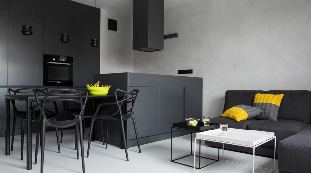 CC /_\ CONCRETE CONCEPT Masculine Apartment by KASIA ORWAT Home Design