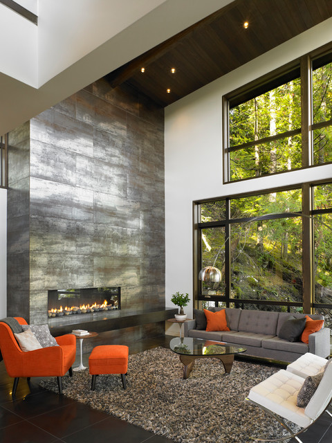 Top 16 Contemporary Living Room Design Ideas