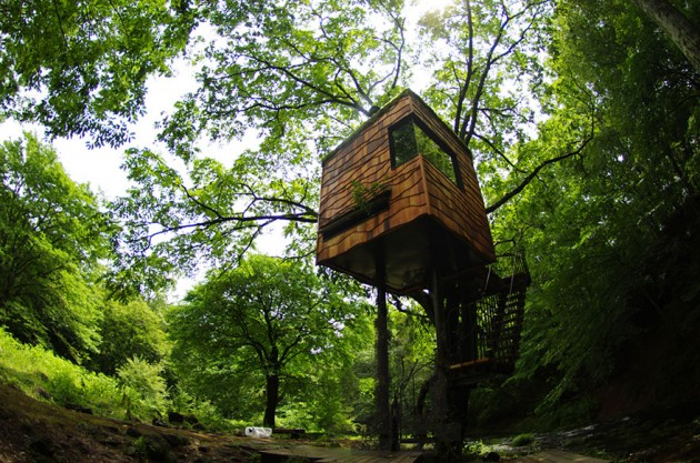 12 Magical Tree Houses That Will Make You Want Them