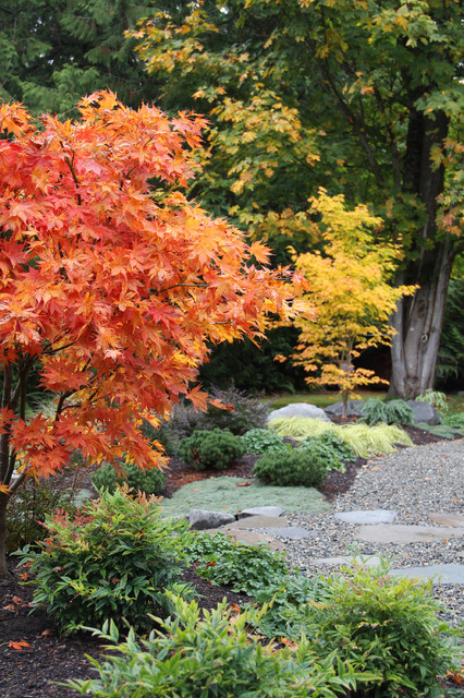 Helpful Tips For Autumn Update of Your Garden