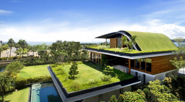 Homes That Look to the Future