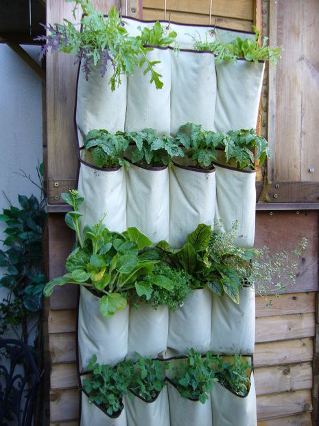 Vertical Fence Planters