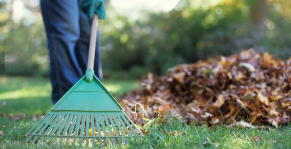 Clever Tips To Prepare Your Garden for The Upcoming Cold Winter