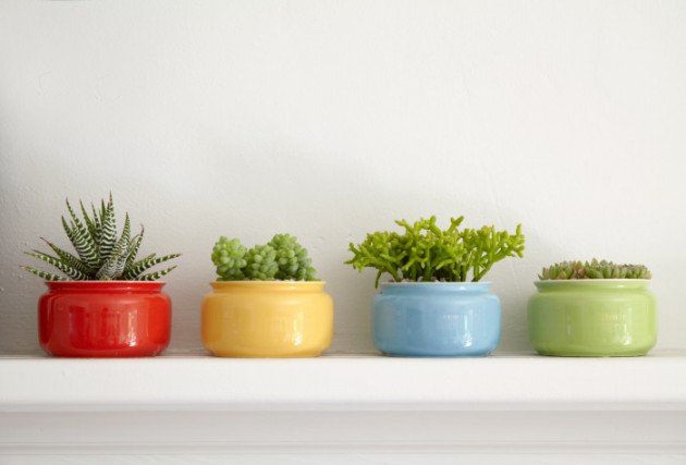 16 Refreshing Mini Indoor Planters For Every Part Of The Home