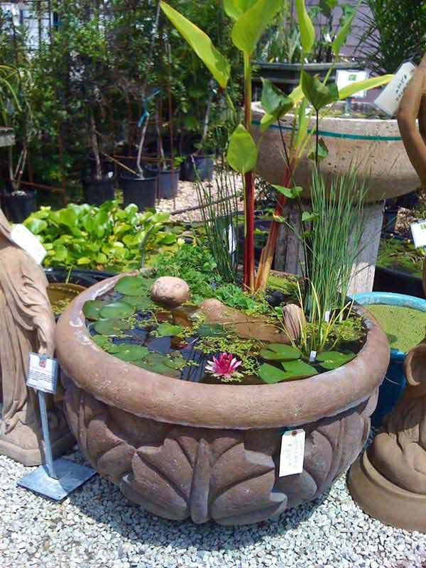 15 charming diy mini garden pond ideas for Diy patio pond