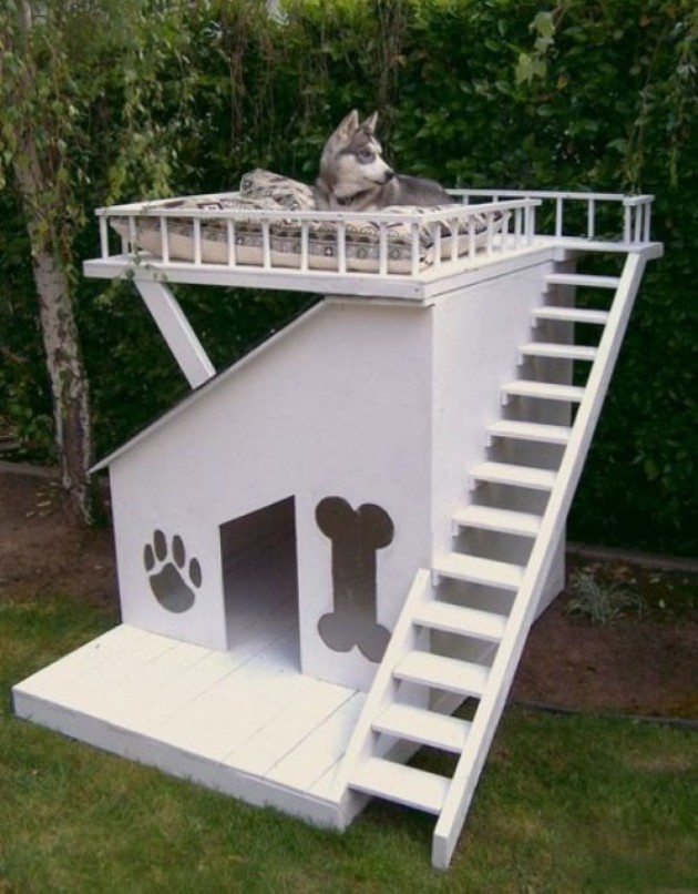 Top 10 Of The Coolest Dog House Designs