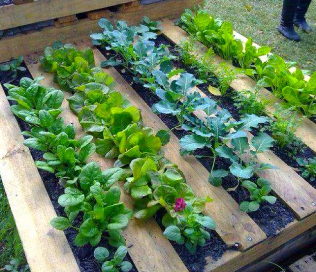 17 Fascinating DIY Pallet Planter Designs