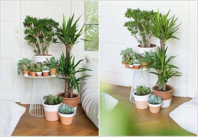 18 Functional Ideas How To Display Your Indoor Plants