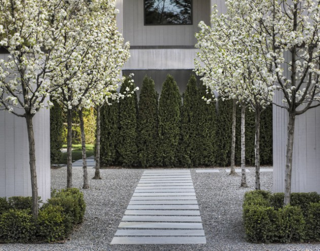 19 Astounding Landscape Design Ideas With Trees