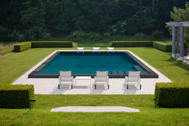 18 breathtaking transitional swimming pool designs you won for Pool design types