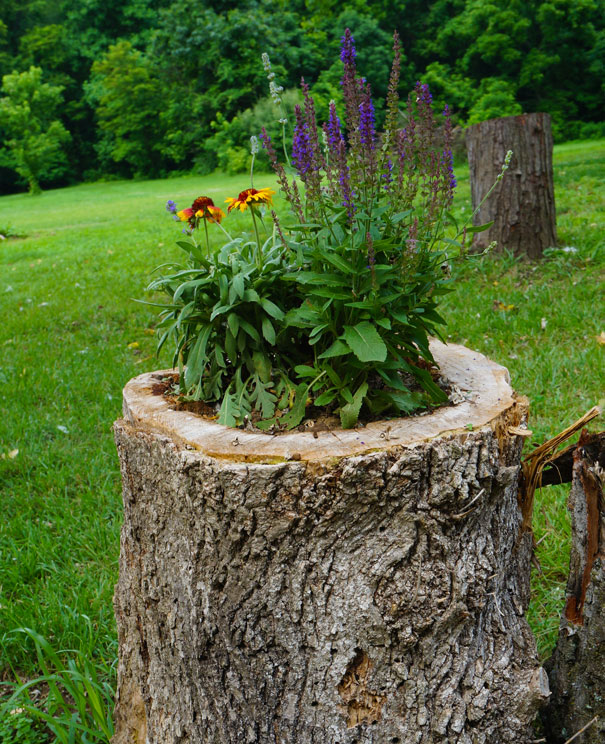 15 Creative Garden Ideas You Can Steal: 14 Interesting Ideas How To Decorate Your Garden With Tree
