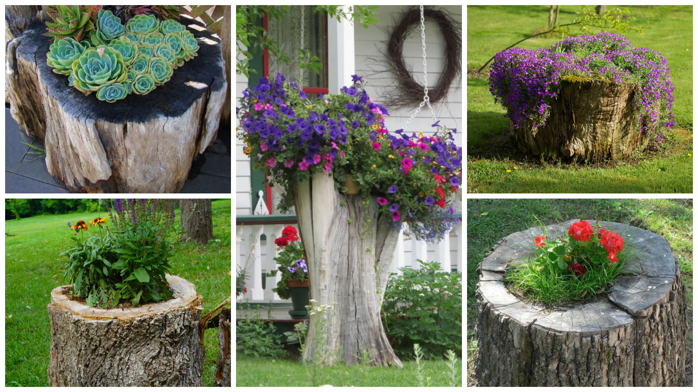 14 Interesting Ideas How To Decorate Your Garden With Tree