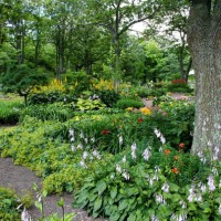 Creating Landscaping that WOWs