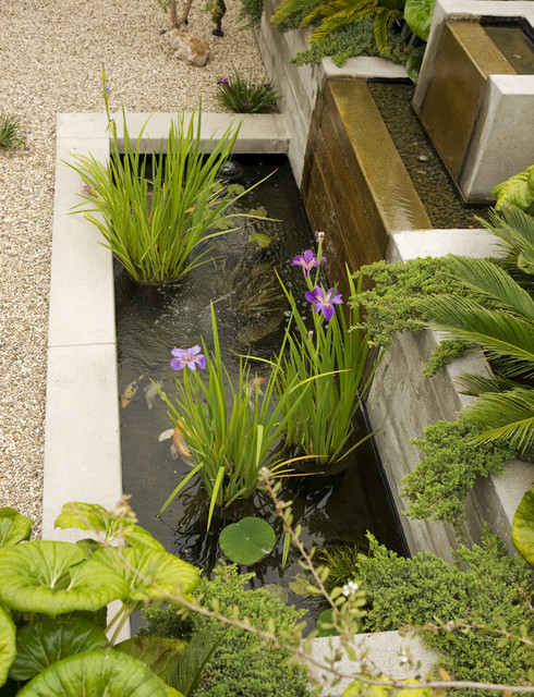 18 Magnificent Ideas To Make Mini Garden Pond That Will Steal The Show