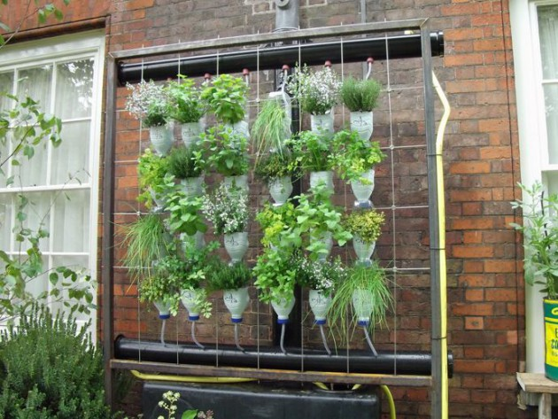 21 Most Attractive DIY Hanging Garden Ideas To Break The Monotony In Every Space