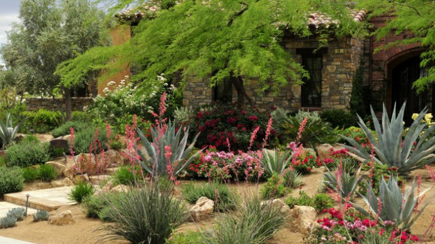 16 Dazzling Desert Landscape Designs That You Are Going To Love