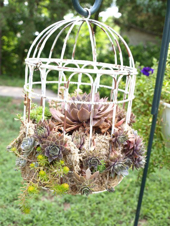 Top 20 Surprisingly Genius Ideas To Repurpose Birdcages Into Planters