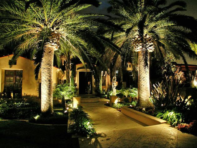 19 Exceptional Ideas To Decorate Your Landscape With Palm ... on Backyard Landscaping Ideas With Palm Trees id=66338