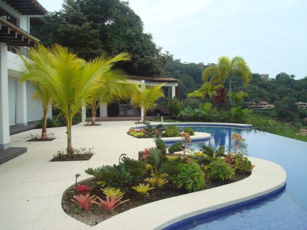 19 Exceptional Ideas To Decorate Your Landscape With Palm ... on Backyard Landscaping Ideas With Palm Trees id=15997
