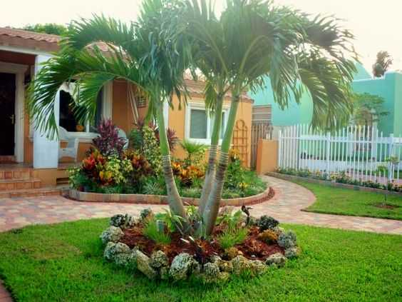 19 Exceptional Ideas To Decorate Your Landscape With Palm ... on Backyard Landscaping Ideas With Palm Trees id=22291