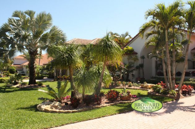 19 Exceptional Ideas To Decorate Your Landscape With Palm ... on Backyard Landscaping Ideas With Palm Trees id=66397